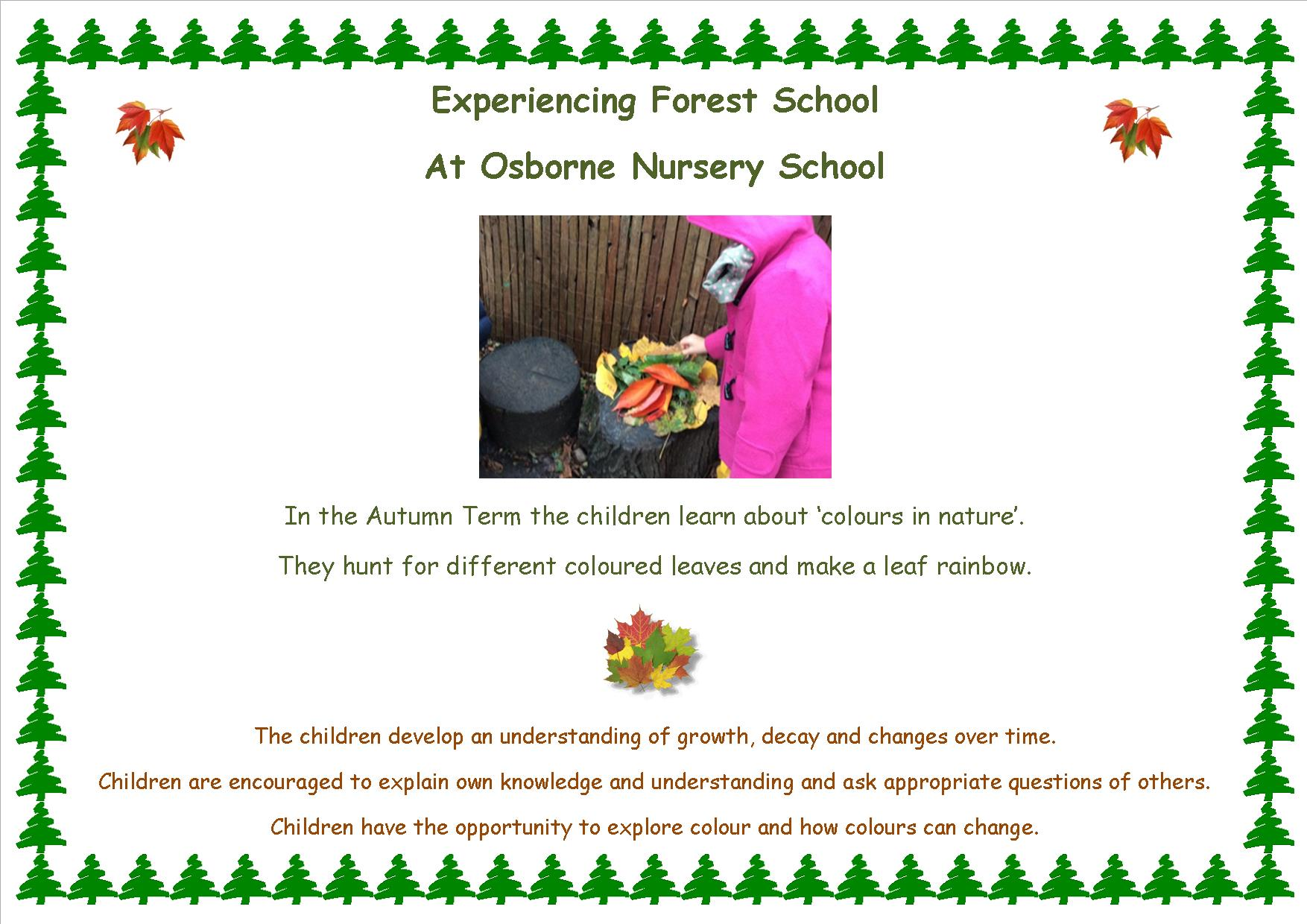 Best Apps For 4 Year Olds >> Forest School | Osborne Nursery School